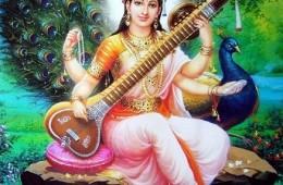 Acharya Swami Kamalavidya Saraswati CV