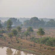 Rikhiapeeth Ashram- Jarkhand- India